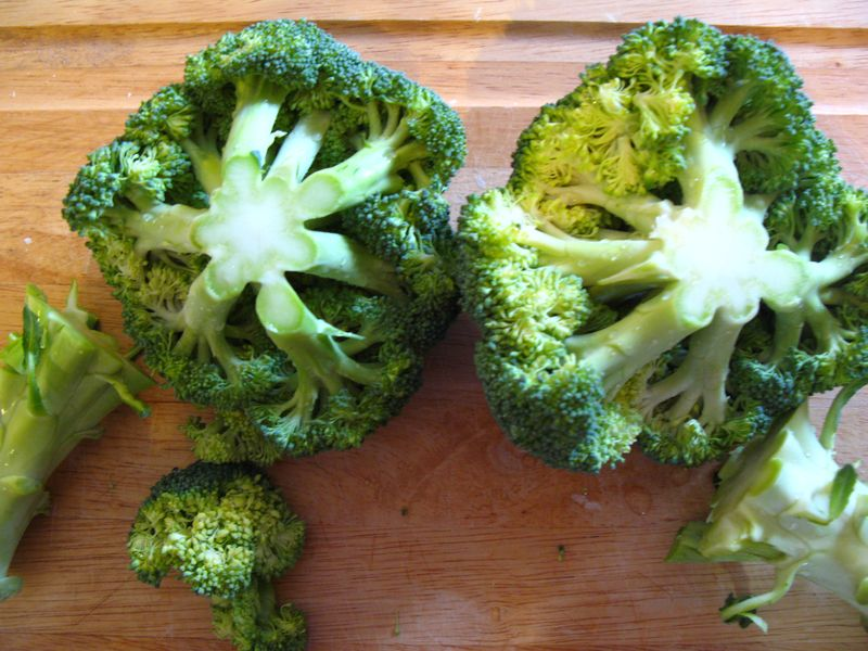 Broccoli and choctart 003