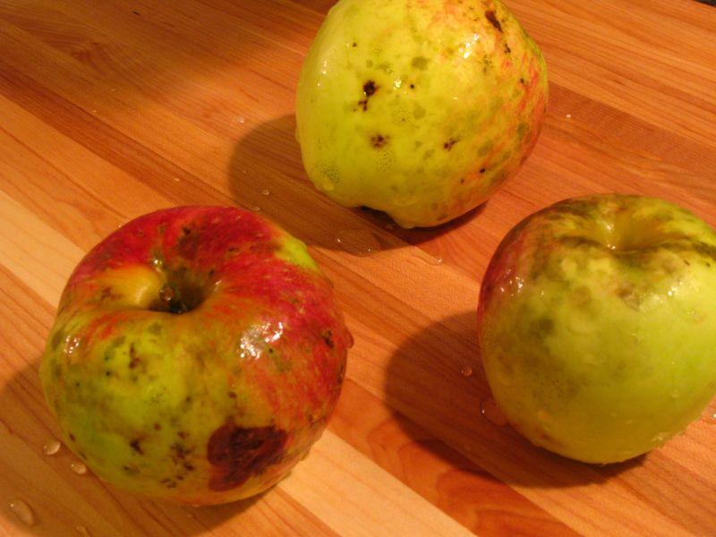 Apple tart 023